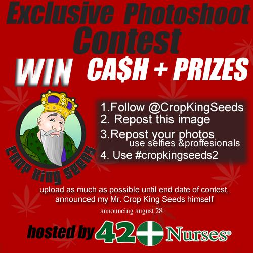 PHOTOCONTEST CASH PRIZE 1 WINNER