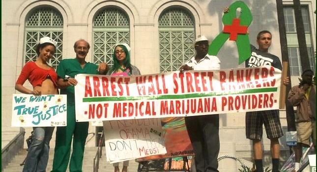 Cannabis Activist Team